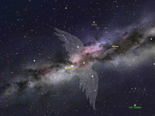 Astronomia - Costellazione del Cigno e Via Lattea con il suo mare di stelle