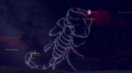 Astronomia - Costellazione dello Scorpione
