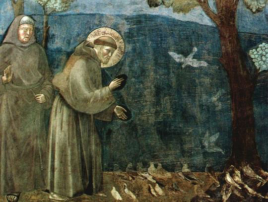 San Francesco di Assisi - predica agli uccelli